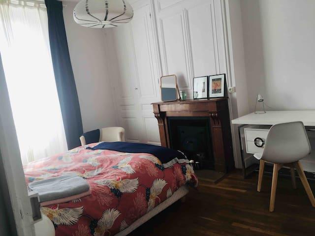 Chambre spacieuse/charme de l'ancien/Gerland