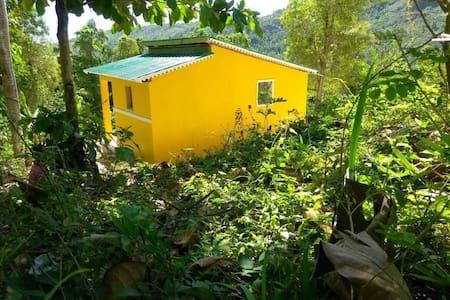 La petite maison jaune