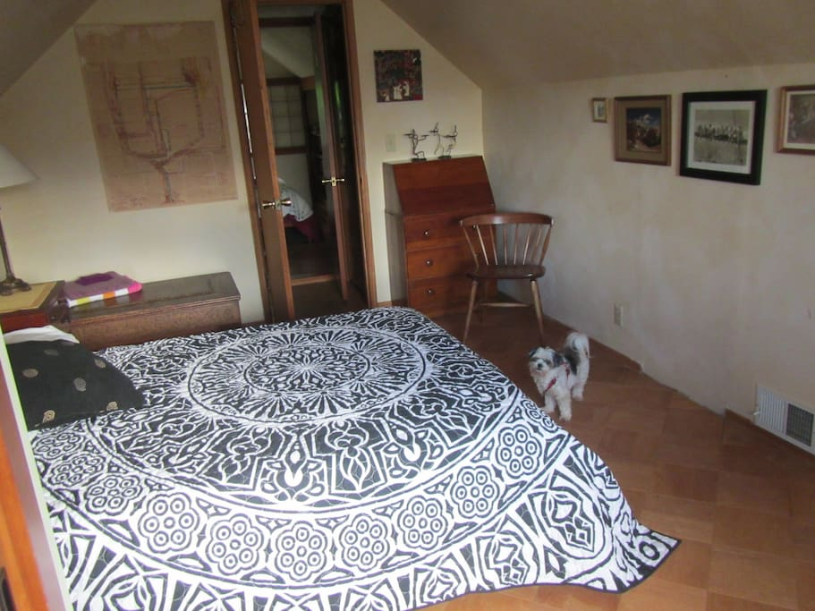 Another view of the room, with matching dog, Libbie.