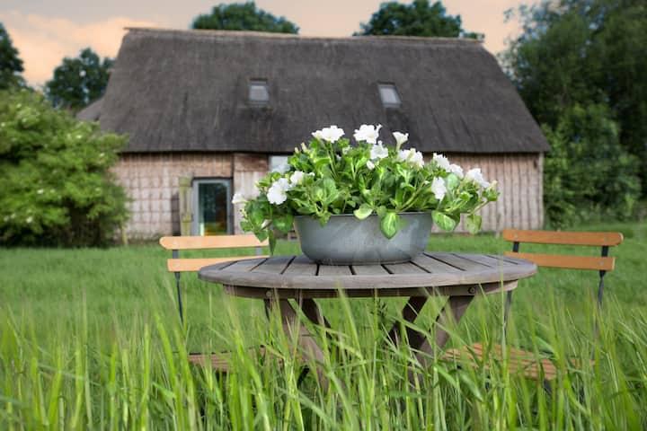 Een rustig en comfortabel huis middenin de natuur