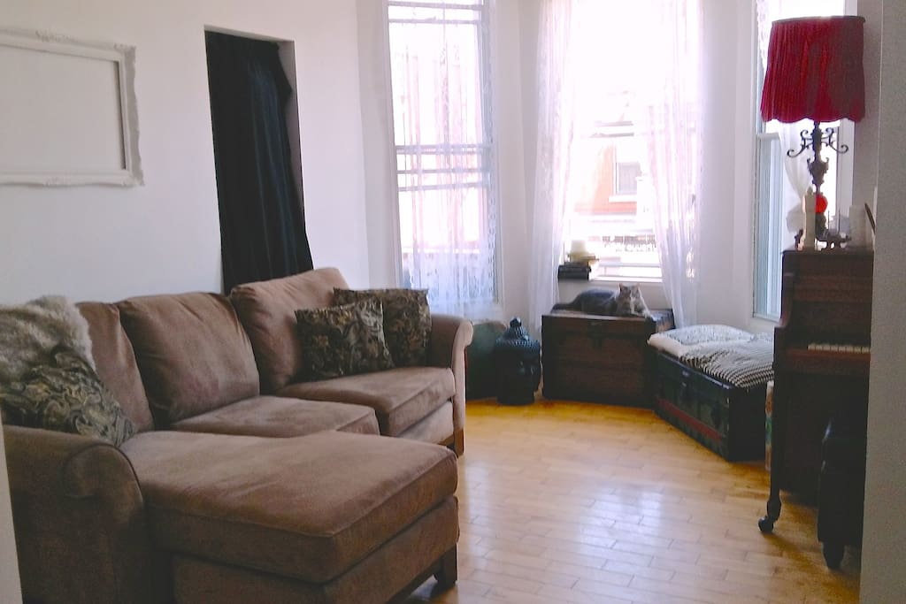 Sunny living room, extremely comfy couch.