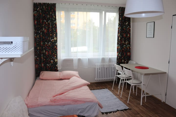 Lovely private room close to the city center