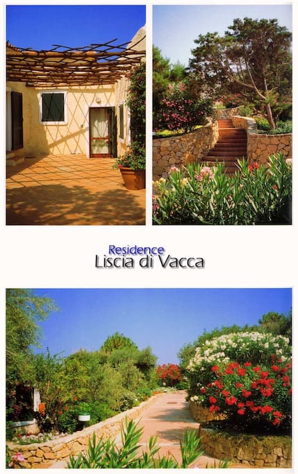 """The residence """"Liscia di Vacca"""""""