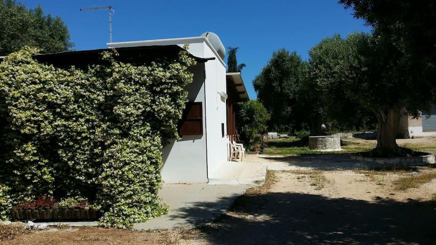 Villetta tra gli ulivi - San Vito dei Normanni - House