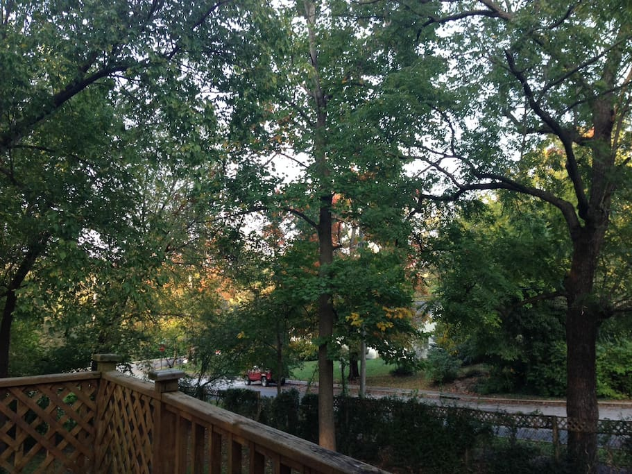 Back porch view of Wilson Park