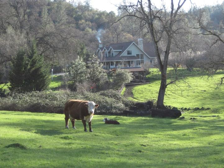 Three Sisters Ranch