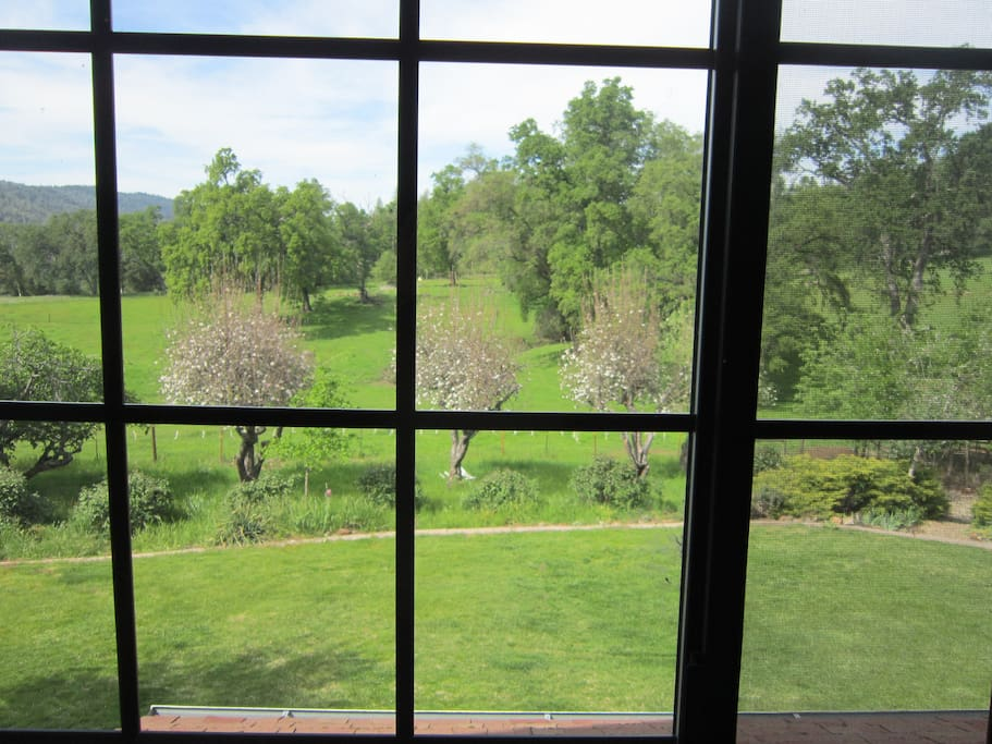 View from your bedroom.