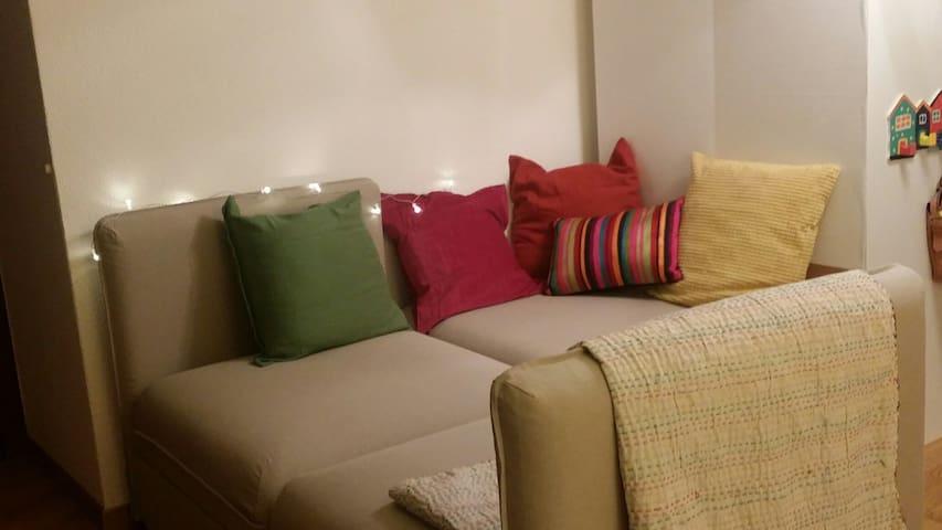 No Frills, Cozy Budget Bedsit! - Zürich - Apartment