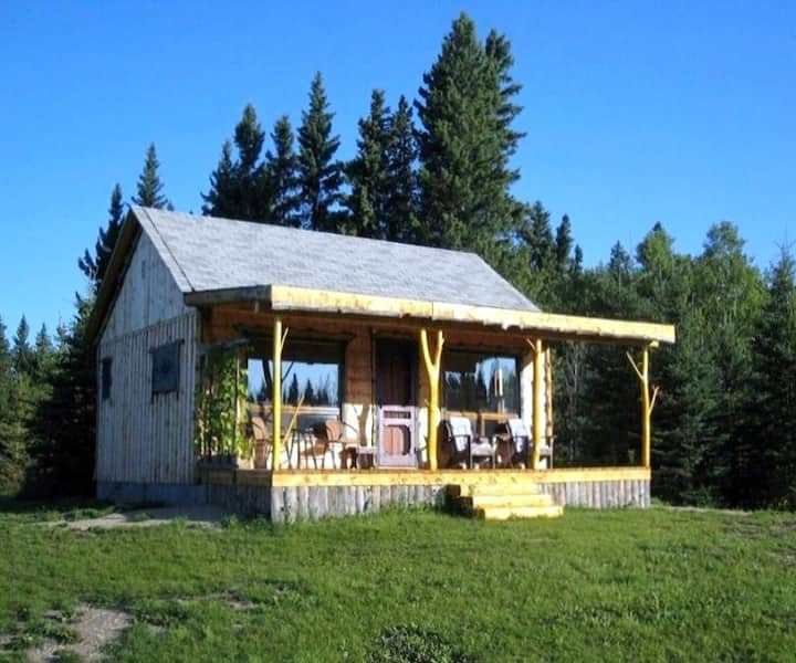 The Exquisite 'Fiddlehead Cabin'