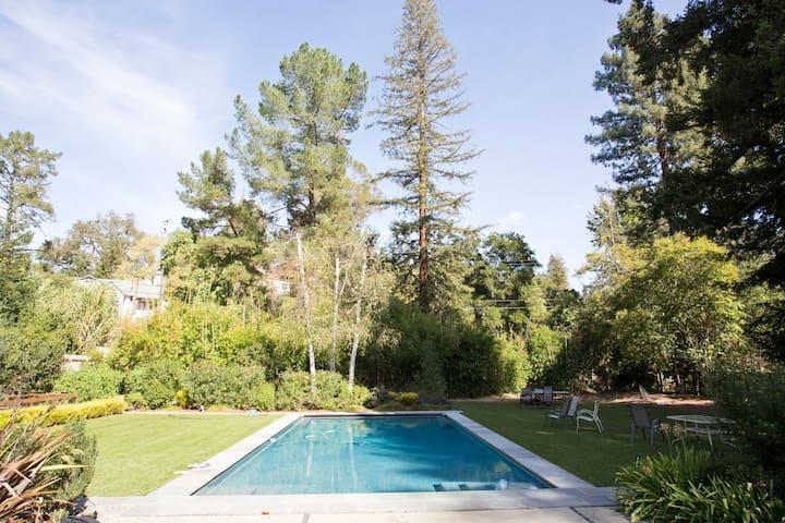 Yard and pool.