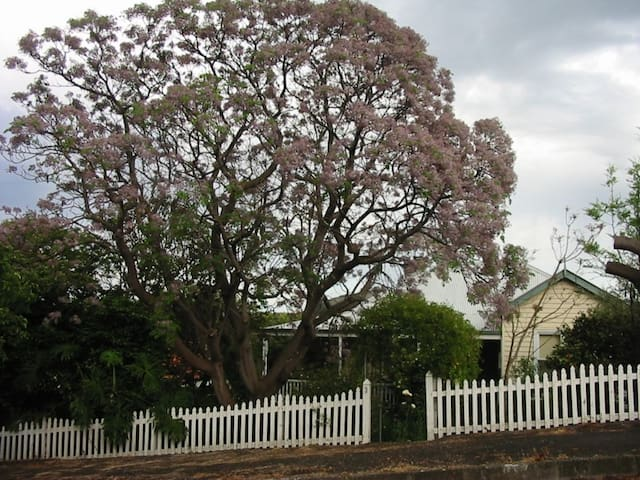 Camellia Cottage Albany  - Albany - Casa