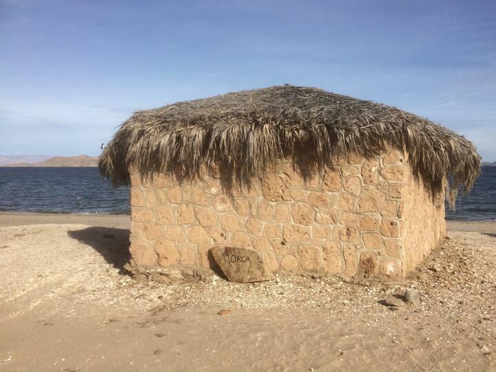 Campo Archelon: Palapa Orca