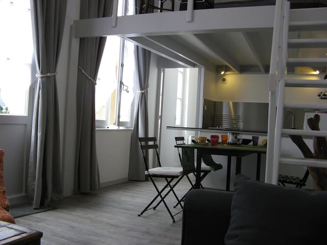 Tours Centre Halles-Saint Martin - Tours - Appartement