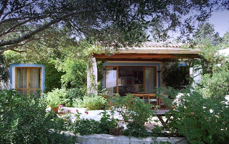 Villa with garden - Costa Smeralda - Punta Sardegna - Villa