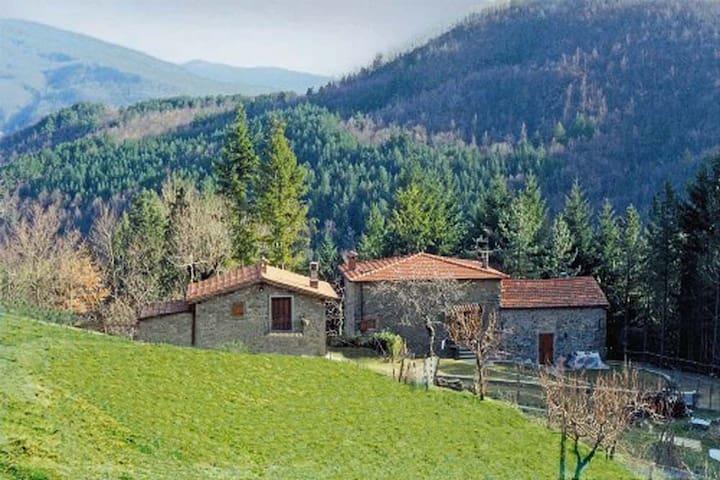 Bioagriturismo in Toscana tra cervi ed eremiti