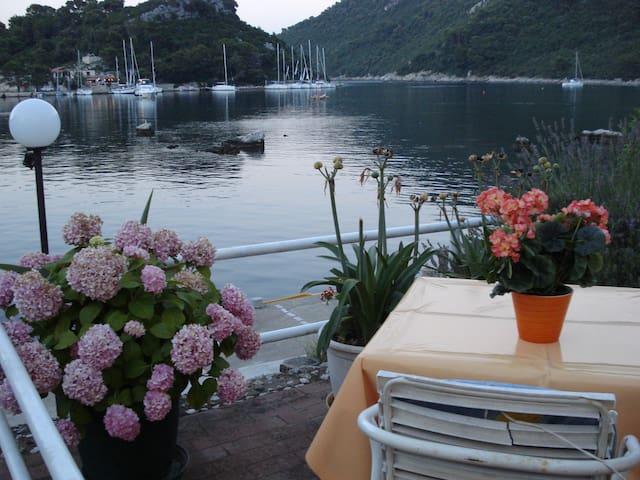 Beautiful Apartment Luna #Okuklje# Mljet   1/2+1