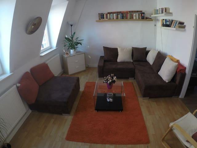 Altstadt Heidelberg - beautiful, charming studio - Heidelberg - Departamento