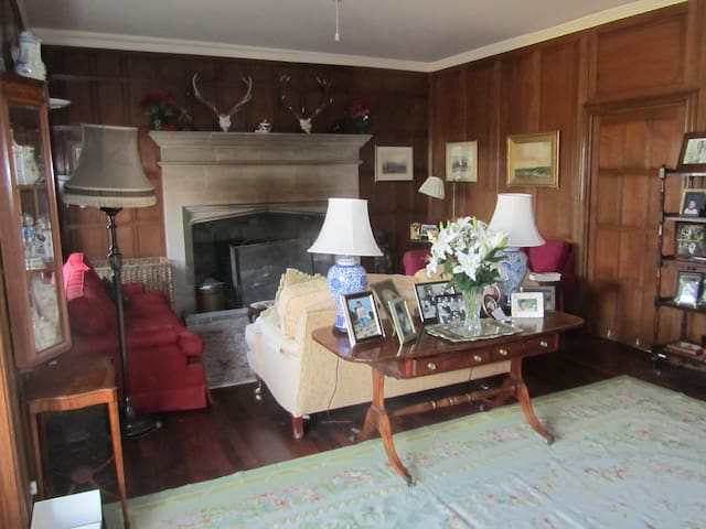 Panelled drawing room