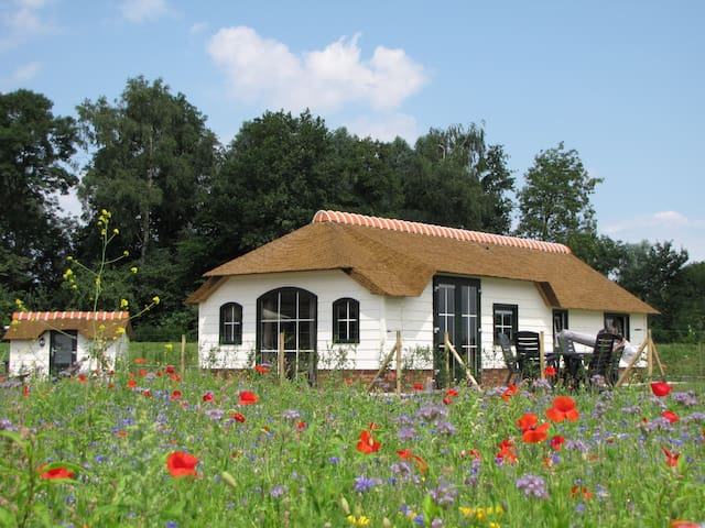 Peat Cottage located in the meadow - Woubrugge - House