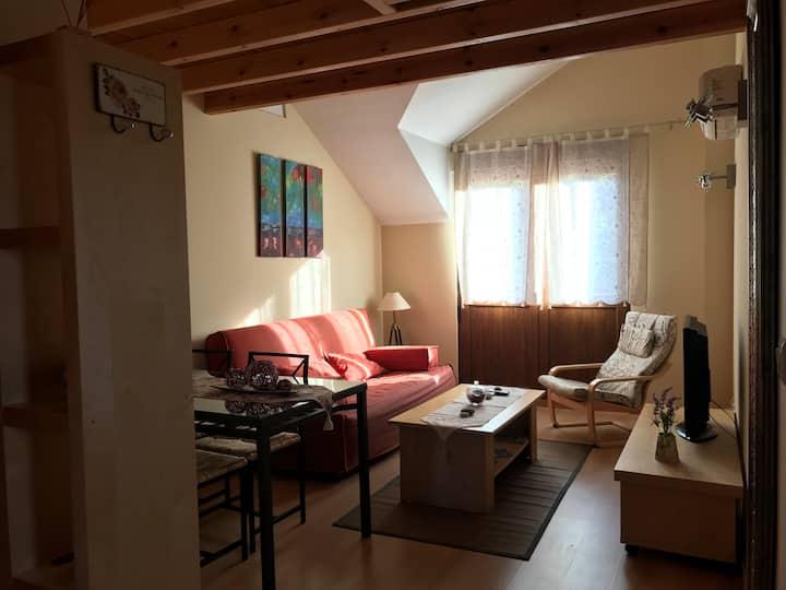 Precioso apartamento en el Val de San Vicente