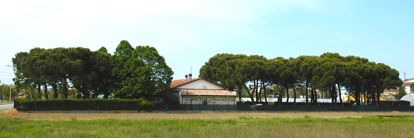 La campagna al mare - Igea Marina - Casa