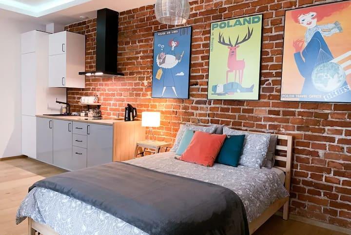 Saguaro Luxury Apartment Old Town Cracow/Kazimierz