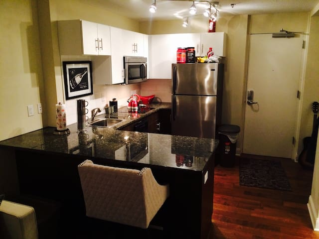 Quiet, trendy, downtown Saint Paul - Saint Paul - Apartamento