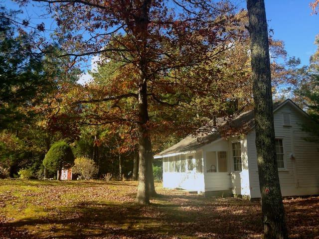Woodstock-Saugerties Loft Cabin - Saugerties - Dom