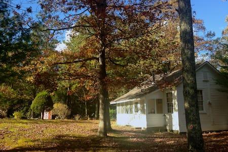 Woodstock-Saugerties Loft Cabin - Saugerties