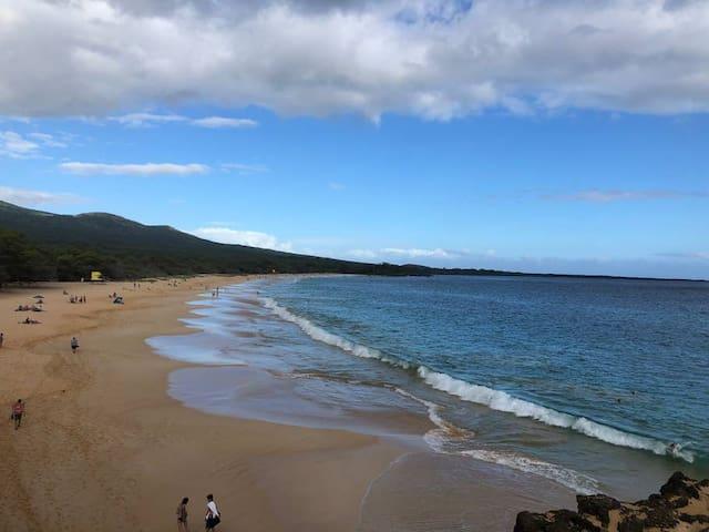 Tasha's Maui Upcountry Guidebook