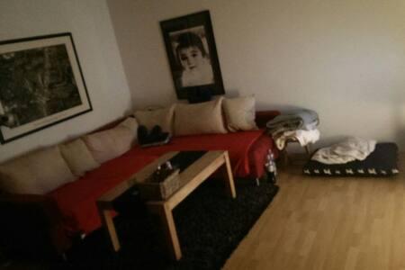 Ein ganzes Wohnzimmer  - Ascheberg - Flat