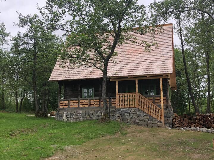 Poiana Creasta Cocosului - Clover House