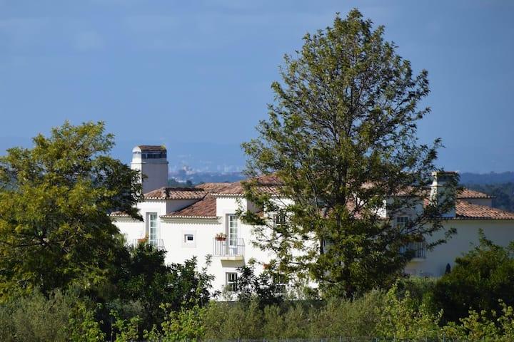 Quinta de Catralvos | Touriga Room