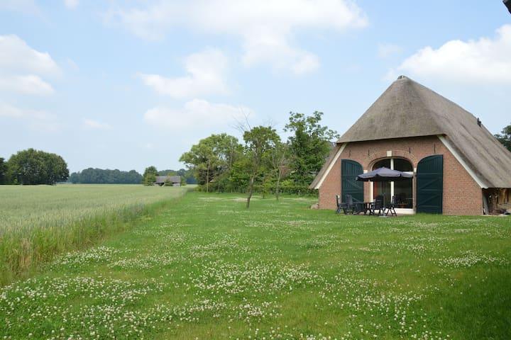 Pintoresca casa rural en Geesteren con terraza