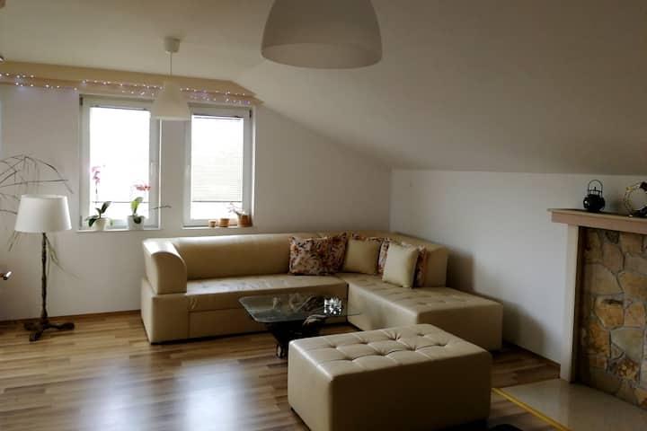 MAV-Bright, cozy, spacious flat with a garden 3