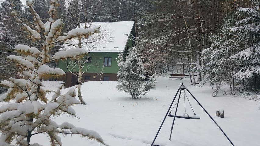 Zielony domek na Roztoczu - Krasnobród - House