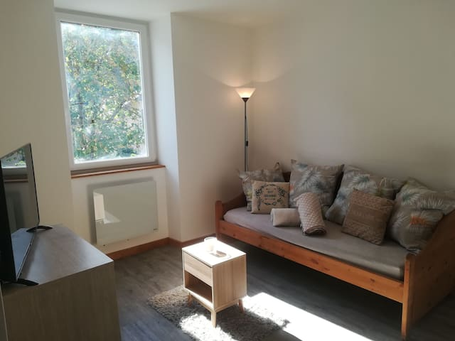 Albertville - Joli appartement cosy tout équipé.