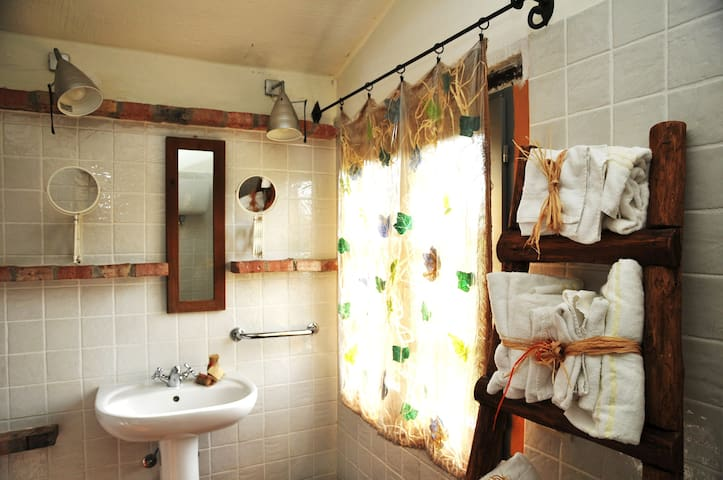 Vacation rental in Umbria region - Castiglione del lago - Lejlighed