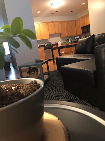 Comfortable room in a beautiful apt, lakeview