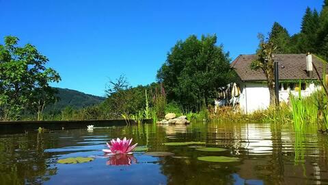 "Sauvillery Wohnung "" au bord des 1000 étangs"