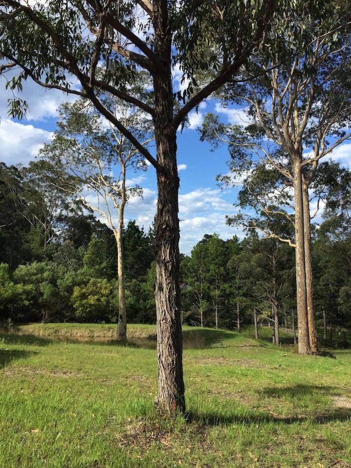 """Lilli Pilli Retreat South Coast NSW """"Daraani"""""""