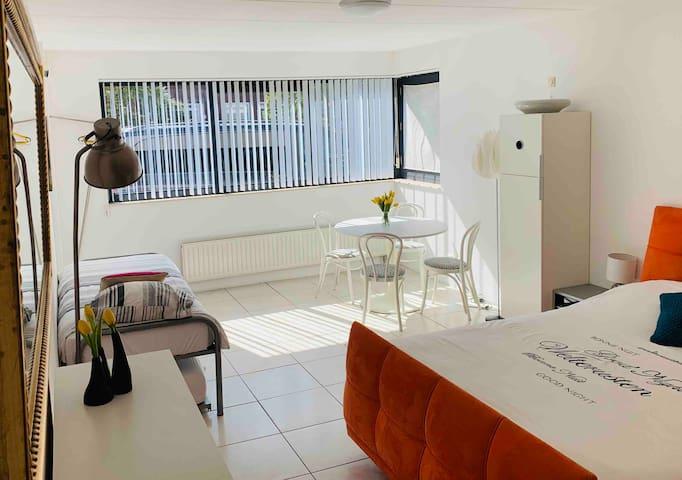 Studio +  garden and parking space.