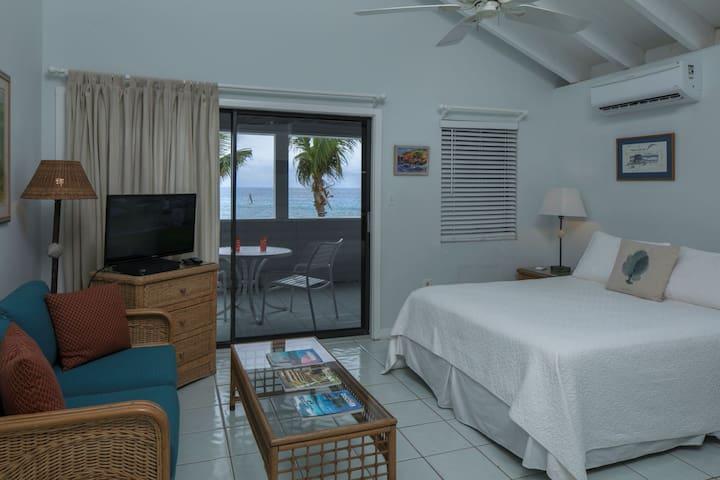 Coconut Coast Villas - Bougainvillea Waterfront Studio