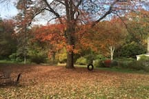 Another view of the backyard in the fall.