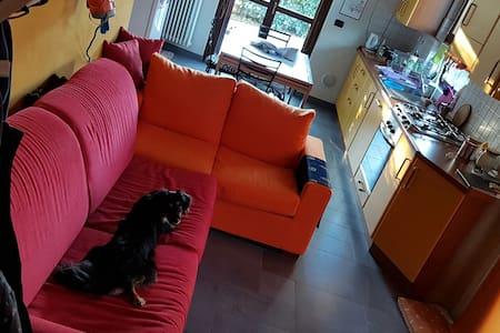 Splendido divanoletto per viandanti - San Michele 5c