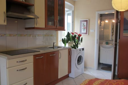 Homestay-studio apartment with bathroom & kitchen