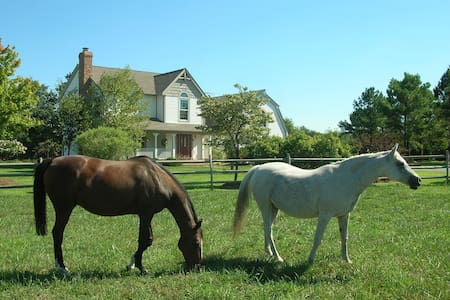 Waterfront Horse Farm Estate(working fireplace ) - McDaniel - Casa