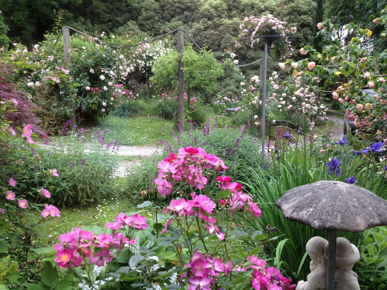 Perfumed front garden in spring