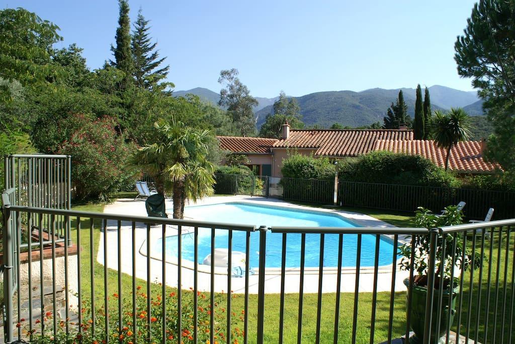La piscine avec sa pelouse, sa terrasse, sa douche chaude et ses transats