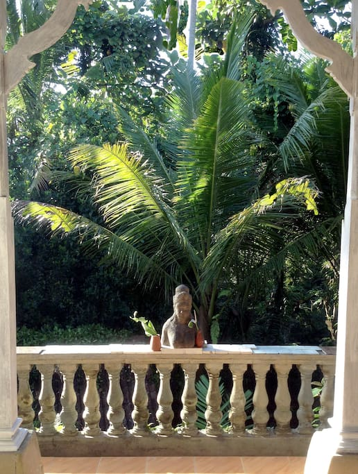 Goddess on your Terrace, overlooking the Jungle